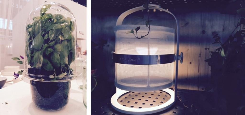 monbalconparisien.fr a aimé ces accessoires: une serre pour faire pousser du basilic dans sa cuisine, une lampe outdoor très design et autonome car solaire...