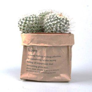 cadeau végétal