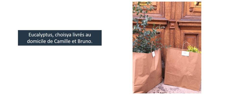 livraison de plantes à paris