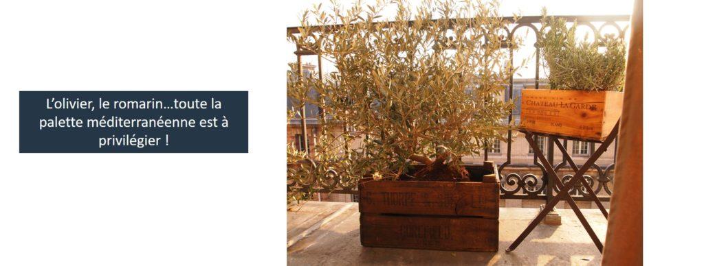 balcon au soleil quelle plante choisir
