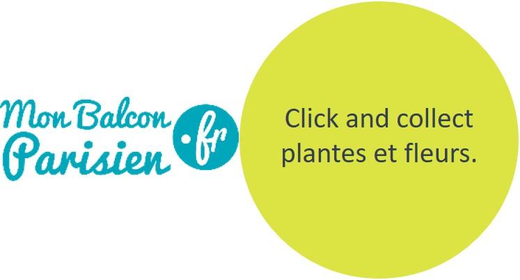 Click and collect plantes et fleurs