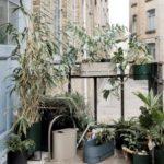 Iconic balconni...