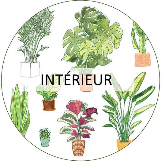 jardinerie urbaine